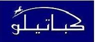 ابناء مروان صلاح الدين كباتيلو